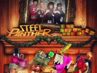 Steel panther stocking song